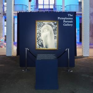 THE PICTOPLASMA PORTRAIT GALLERY
